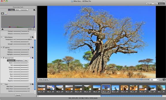 acdsee Pro 2 (mac)